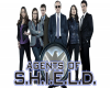 Agents of S.H.I.E.L.D 3. Sezon Ne Zaman?
